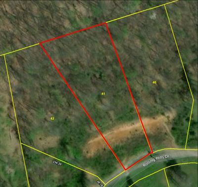 LOT 41 ROLLING HILLS DRIVE, Church Hill, TN 37642 - Photo 1