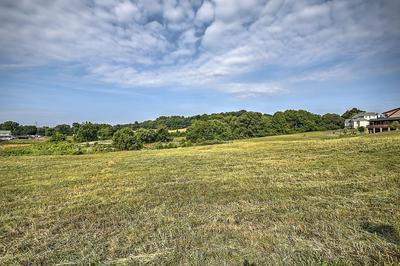 112 CARDINAL PT, Blountville, TN 37617 - Photo 1