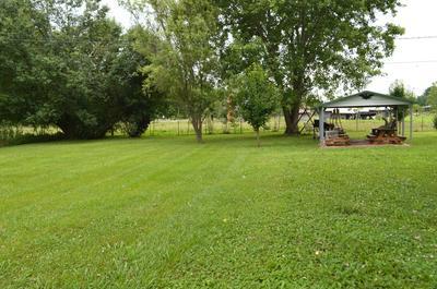 244 PAINTER RD, Chuckey, TN 37641 - Photo 2