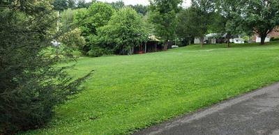 TBD LITTLE AVENUE, Elizabethton, TN 37643 - Photo 2