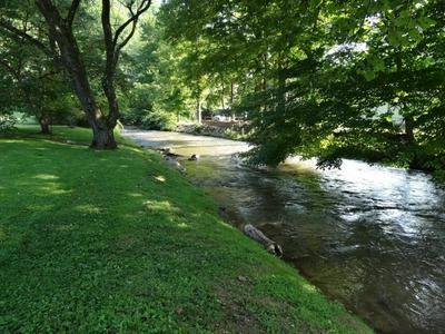 1265 RITTERTOWN RD, Hampton, TN 37658 - Photo 2