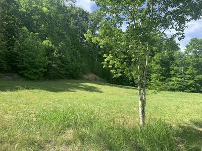 251 PRESSMENS HOME RD, Rogersville, TN 37857 - Photo 1