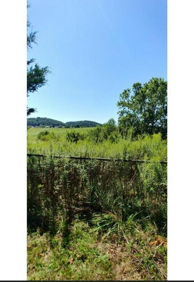 TBD SHANKS GAP RD. ROAD, Rogersville, TN 37857 - Photo 2
