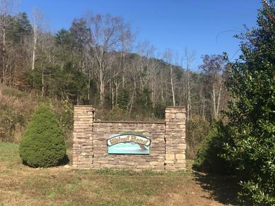 6 WALNUT BEND DR, Whitesburg, TN 37891 - Photo 1