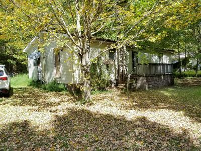 1119 DRY CREEK RD, Elizabethton, TN 37643 - Photo 2