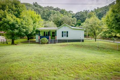 180 MCQUEEN HOLLOW RD, Johnson City, TN 37601 - Photo 1