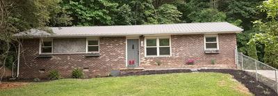 145 RHODY DR, Johnson City, TN 37615 - Photo 1