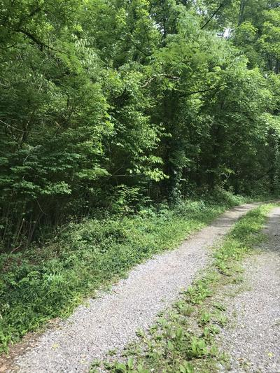 1206 BOWMAN VALLEY RD, Knoxville, TN 37920 - Photo 1