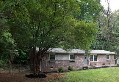145 RHODY DR, Johnson City, TN 37615 - Photo 2