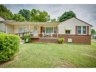 264 BOONE ST, Weber City, VA 24290 - Photo 1