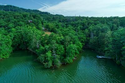 508 CHANNEL POINT DR, Mooresburg, TN 37811 - Photo 1