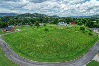 TBD2 MISTY VIEW CIRCLE, Rogersville, TN 37857 - Photo 2