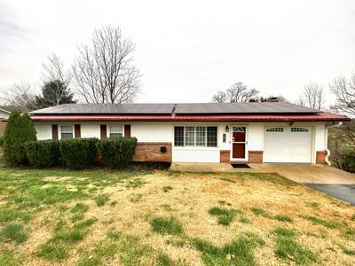 308 MERMAN RD, Kingsport, TN 37663 - Photo 1