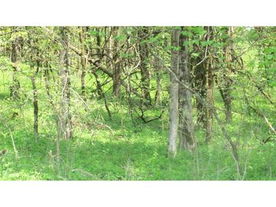 0 1 MILL CREEK, Fort Blackmore, VA 24250 - Photo 2