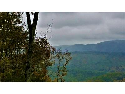 TBD FIRE TOWER ROAD, Mooresburg, TN 37811 - Photo 1