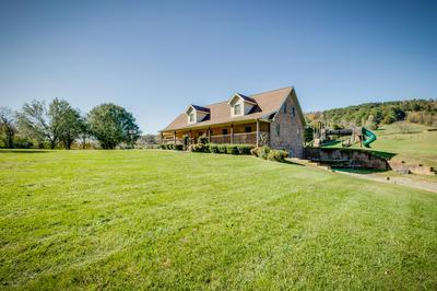 294 GRASSY VALLEY RD, Whitesburg, TN 37891 - Photo 2