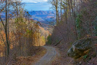 TBD BLACKBERRY RIDGE DRIVE, Blowing Rock, NC 28605 - Photo 1