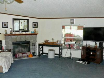 532 NEWT GOOD RD, Limestone, TN 37681 - Photo 2