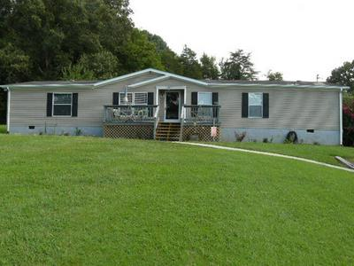 532 NEWT GOOD RD, Limestone, TN 37681 - Photo 1