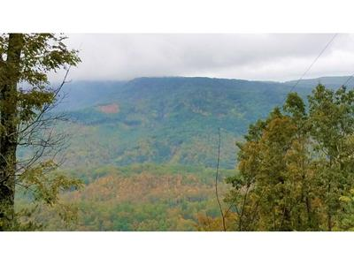 TBD FIRE TOWER ROAD, Mooresburg, TN 37811 - Photo 2