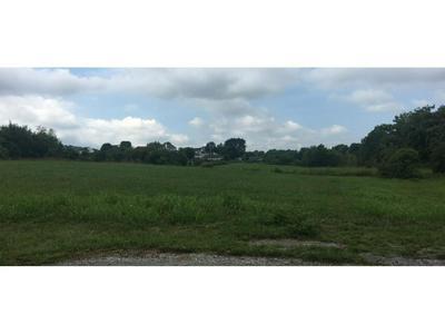 4223 MARABLE LN, Johnson City, TN 37601 - Photo 2