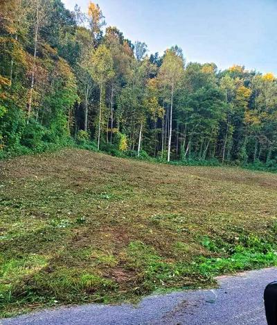 TBD GRASSY VALLEY ROAD, Whitesburg, TN 37891 - Photo 2