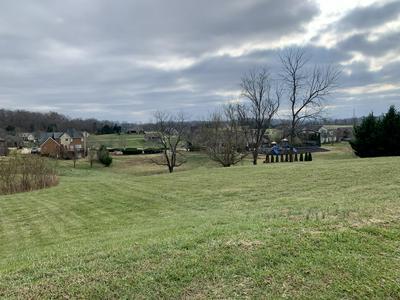 213 FOREST CT, Blountville, TN 37617 - Photo 1