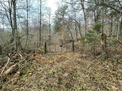 TBD IN THE PINES CIRCLE, Dungannon, VA 24245 - Photo 2