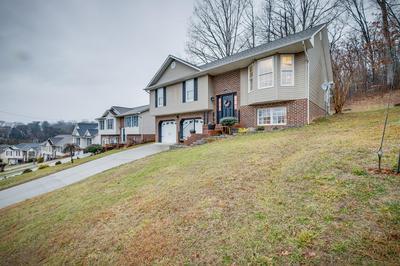 1028 CARRINGTON CT, Kingsport, TN 37660 - Photo 2
