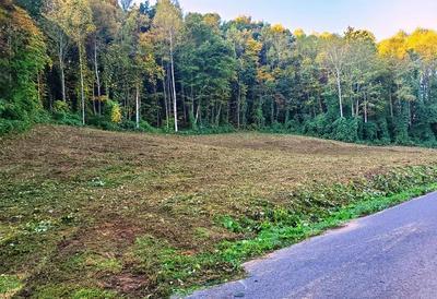 TBD GRASSY VALLEY ROAD, Whitesburg, TN 37891 - Photo 1
