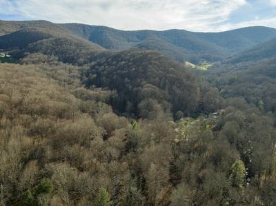 119 WINTER HOLLOW RD, Roan Mountain, TN 37687 - Photo 1