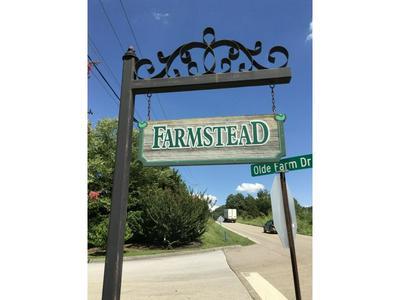 137 OLDE FARM DR, Jonesborough, TN 37659 - Photo 1