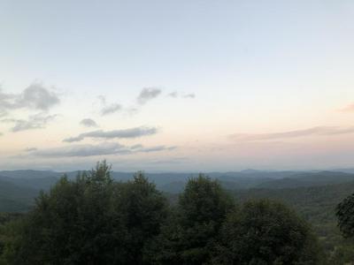 134 VISTA VIEW DR, Roan Mountain, TN 37687 - Photo 2