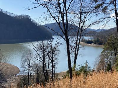2 WALNUT BEND DR, Whitesburg, TN 37891 - Photo 1