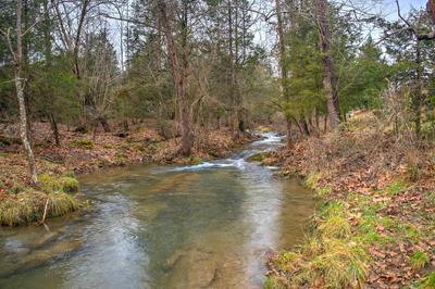 2236 FORDTOWN RD, Jonesborough, TN 37659 - Photo 1