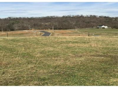 TBD DUNCANS RETREAT LOT 13, Johnson City, TN 37601 - Photo 2