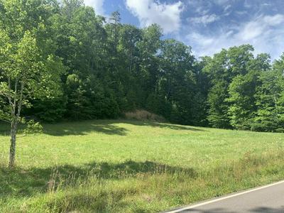 251 PRESSMENS HOME RD, Rogersville, TN 37857 - Photo 2