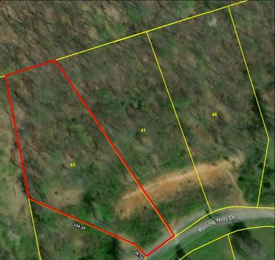 LOT 42 ROLLING HILLS DRIVE, Church Hill, TN 37642 - Photo 1