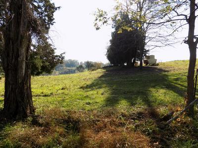 00 MORRISETT CHAPEL RD, Whitesburg, TN 37891 - Photo 2