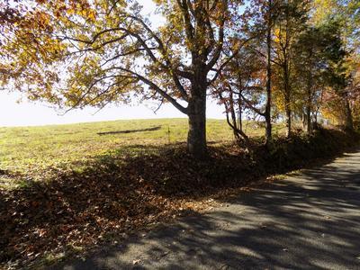 0 MORRISETT CHAPEL RD, Whitesburg, TN 37891 - Photo 1