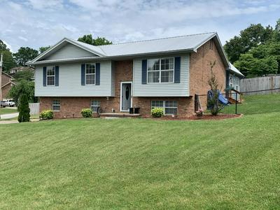 324 LINDSEY ST, Church Hill, TN 37642 - Photo 2