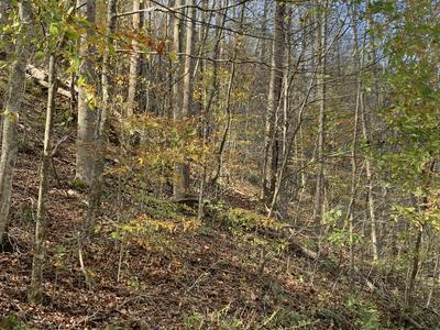 000 CANAAN, Butler, TN 37640 - Photo 2