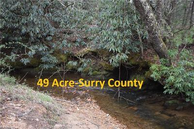 000 LILLY LANE, Lowgap, NC 27024 - Photo 1