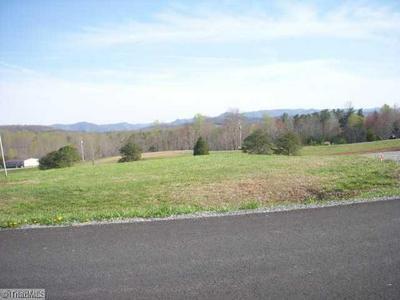 LOT 4 MOUNTAIN CREST LANE, Claudville, VA 24076 - Photo 1