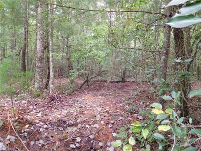 0 MEDLEY LANE, Thurmond, NC 27017 - Photo 1