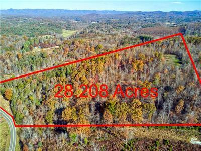 0 ELASTIC PLANT ROAD, Westfield, NC 27053 - Photo 1