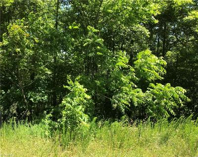 TRACT 3 KING ROAD # PELL, Westfield, NC 27053 - Photo 1