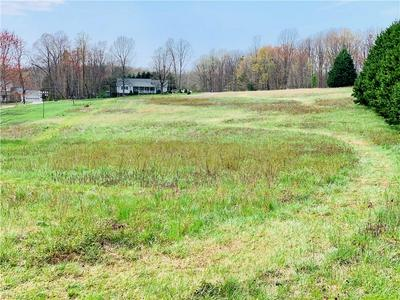 TBD ELDORA ROAD, Ararat, NC 27007 - Photo 1