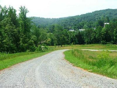 LOT 4 SCOTT BRANCH DRIVE # LOT 4, Danbury, NC 27016 - Photo 2