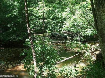 00 WOLF CREEK TRAIL, Rockford, NC 27017 - Photo 1